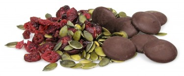 florentine - pumpkin seeds, dark chocolate buttons and cranberries